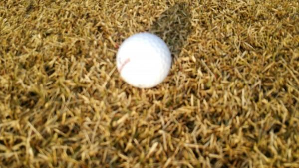 ゴルフボール1
