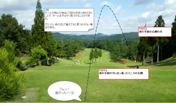 ゴルフのボールの捜し方1